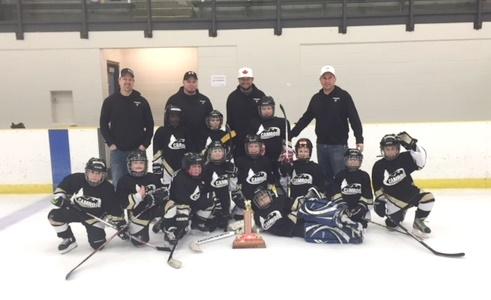Novice Penguins - C Division Winner