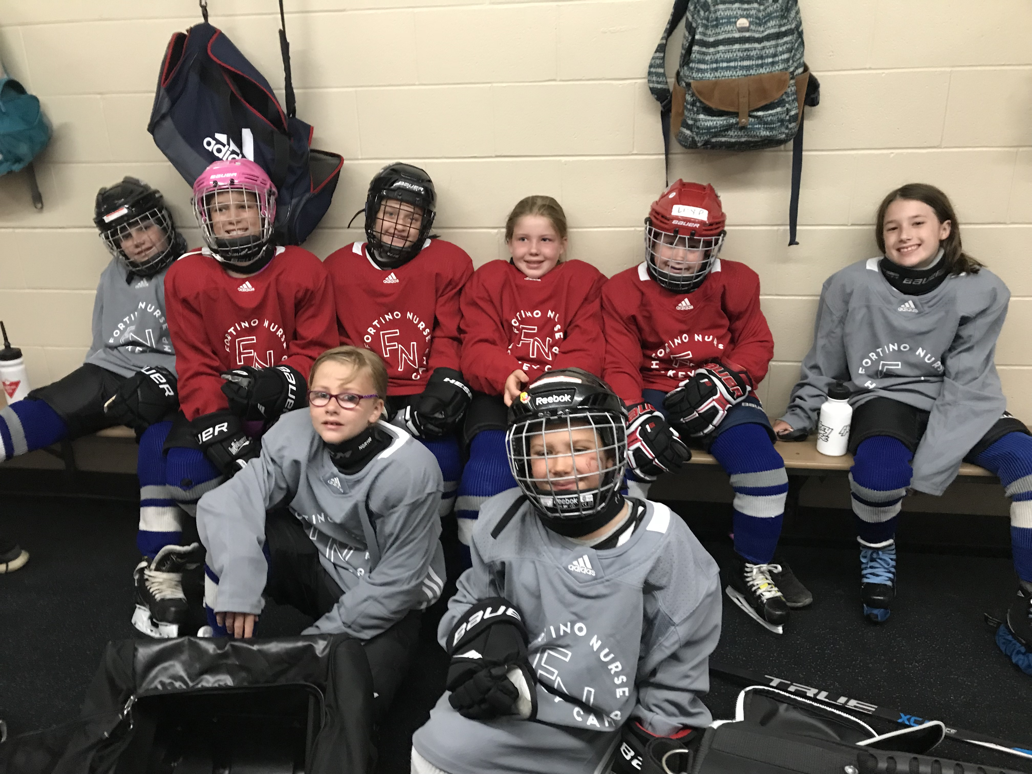Ancaster Avalanche Girls Hockey Association : Website by
