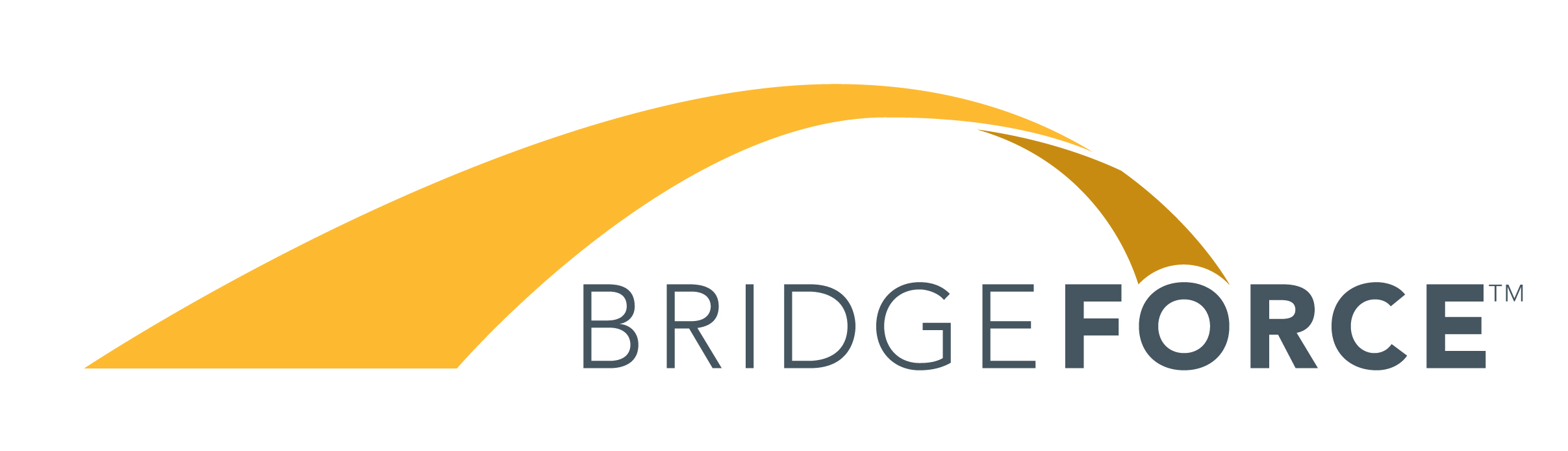 Bridgeforce