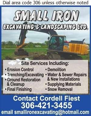 Small Iron