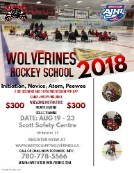 Wolverines Camp