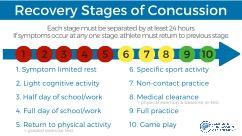 10 Step Concussion