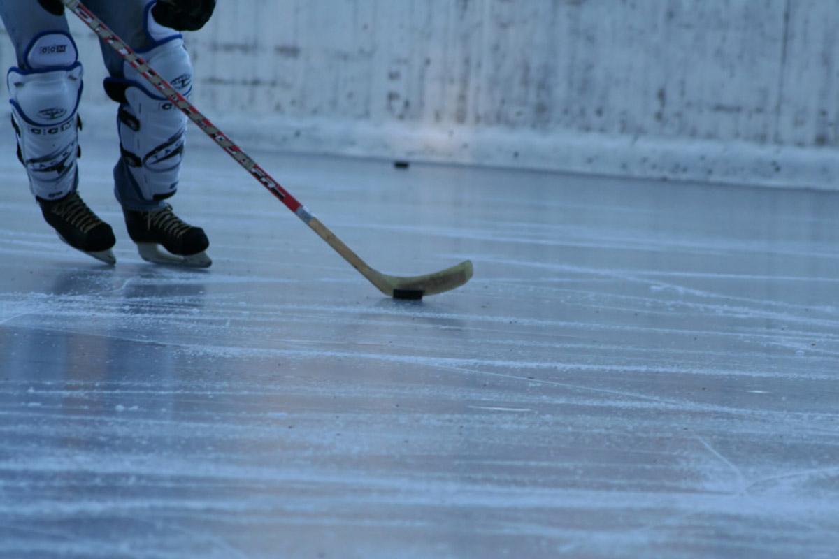 red deer minor hockey website by ramp interactive