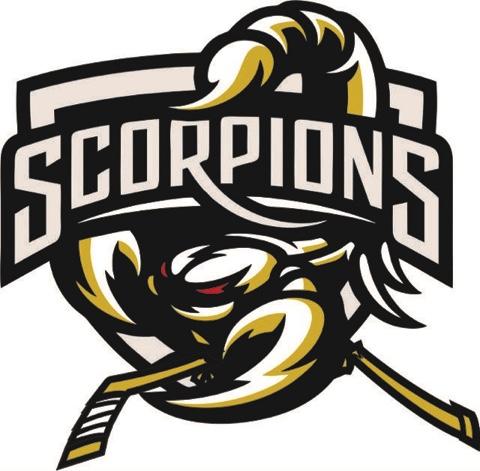 sa726 st albert minor hockey association website by