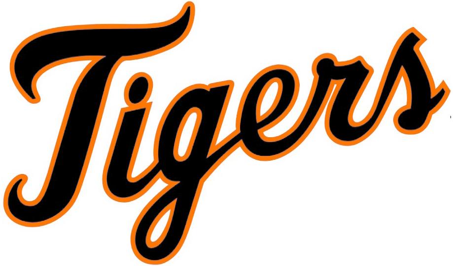 the white tiger full text pdf