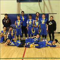 BB3: Gold Medal Division 3