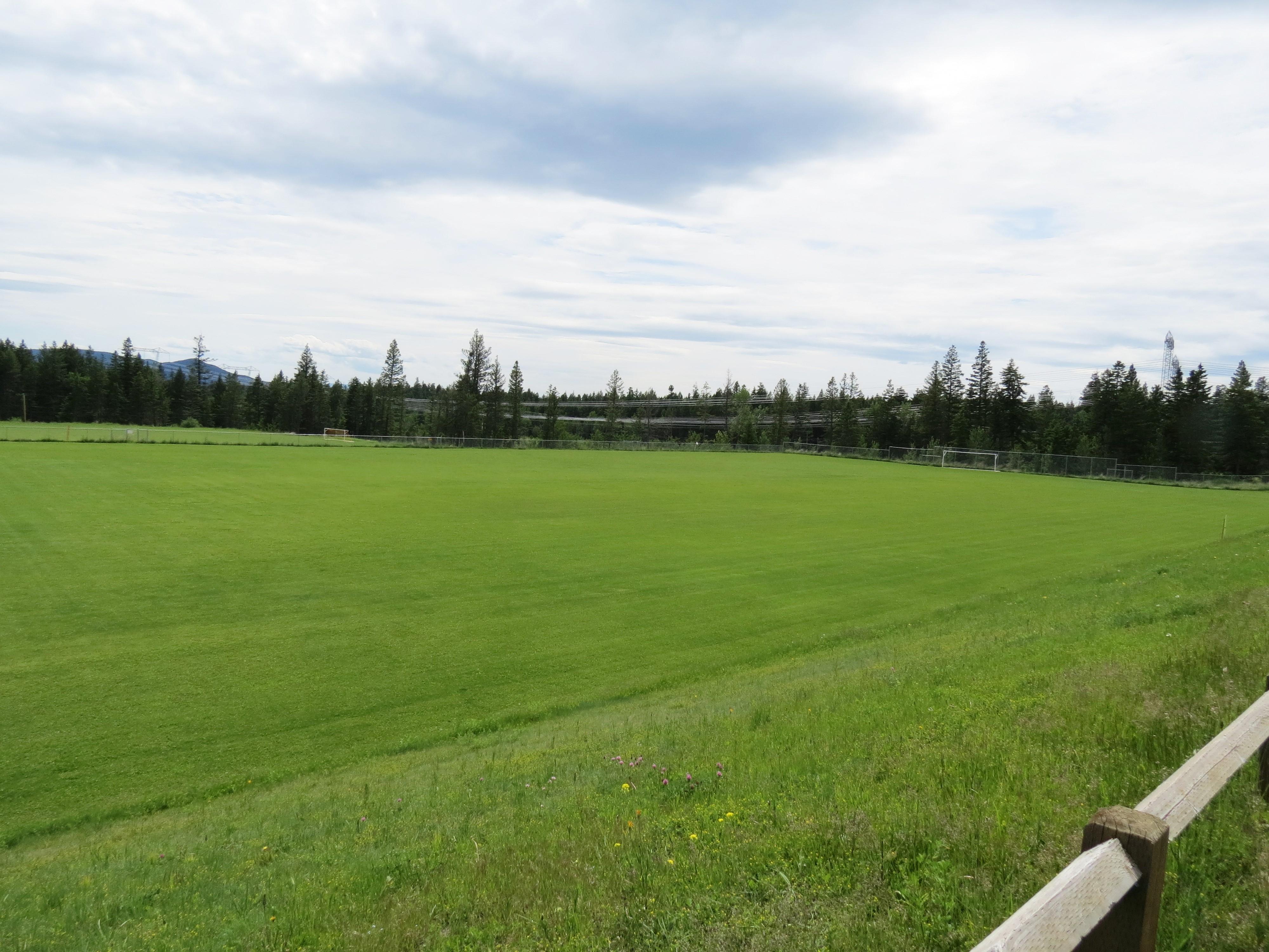 Scotiabank Field