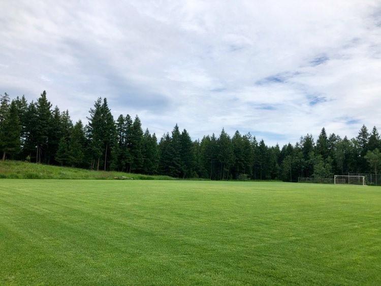 Tolko Field