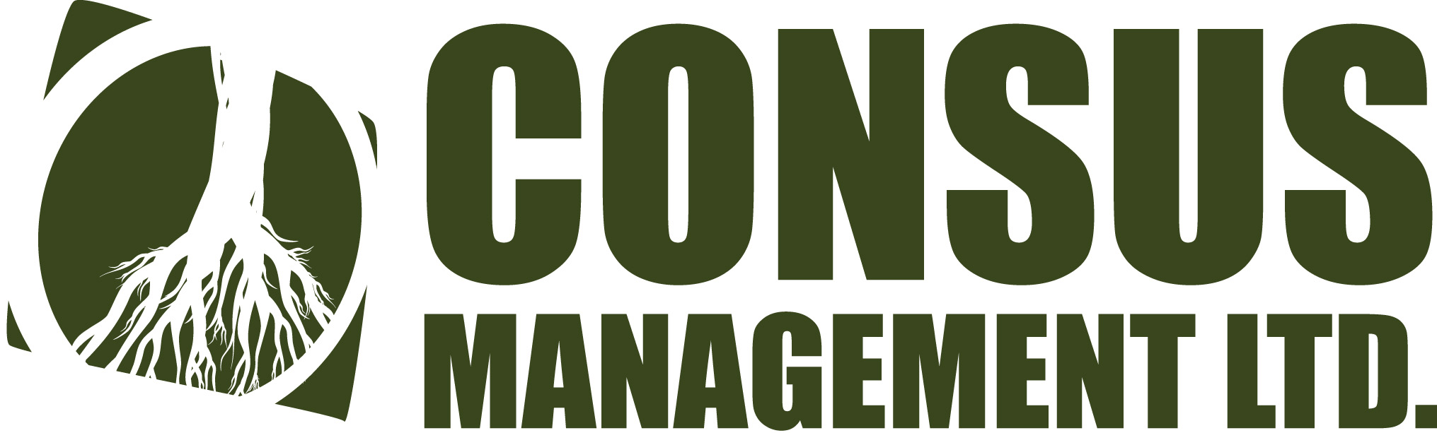 Consus Management Ltd.